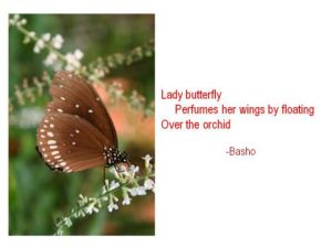 http://mmdelrosario.hubpages.com/hub/haiku-poetry